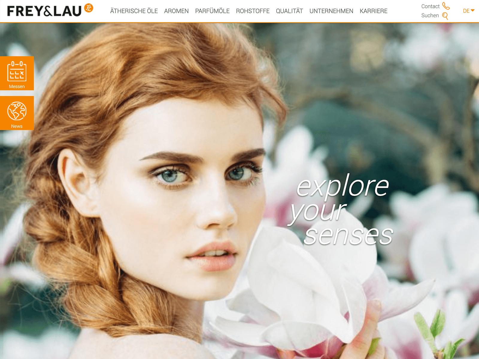 Wordpress-Support und Weiterentwicklung Frey + Lau GmbH