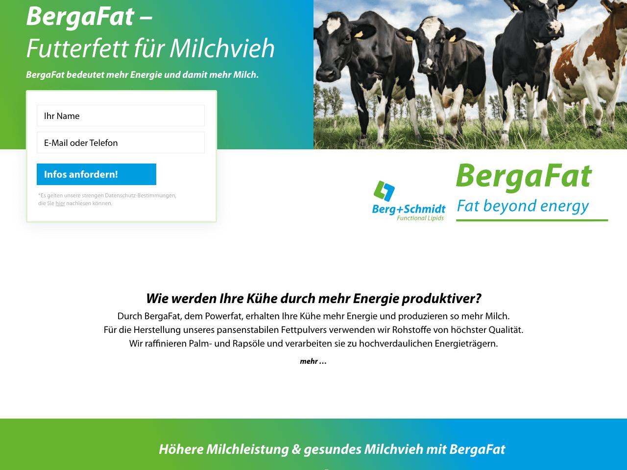 Lead-Kampagne für Stern Wywiol/Bergafat Hamburg